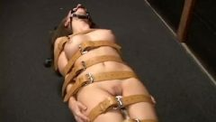 Ashley Fires Strapped & Vibed