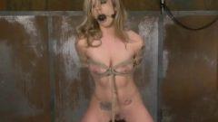 Shibby Vs Orgasm Machine — 90 Seconds